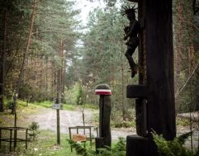 Uroczysko Kruczek koło Janowa Lubelskiego
